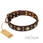 Exklusives Hundegeschenk, Fordogtrainers Halsband