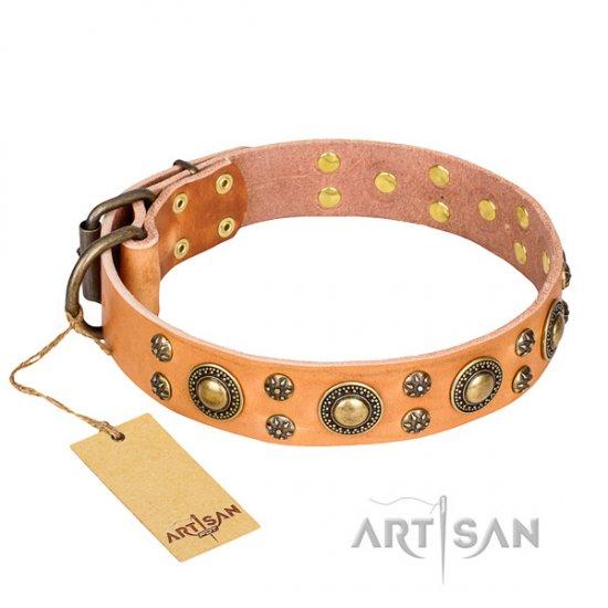 FDT Artisan Lederhalsband in Tan Farbe mit Barock Platten