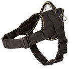 Dog Harness for Sport | Pull Harness for Every Four-Legged