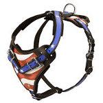 Amerikanisches Hundegeschirr aus Leder mit entschprechendem Design