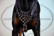 Studded Dog Harness Exclusive | Walking Harness for Doberman
