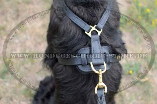 Hundeleine aus Leder mit Messing Haken
