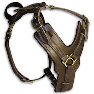 Dog Harness TOP-Class | Dog Leather Harness Fine