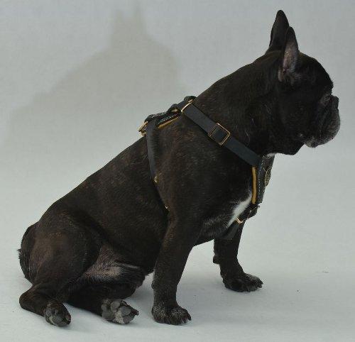 gepolstertes hundegeschirr für franzoesische bulldogge  €719 ~ Geschirr Französische Bulldogge