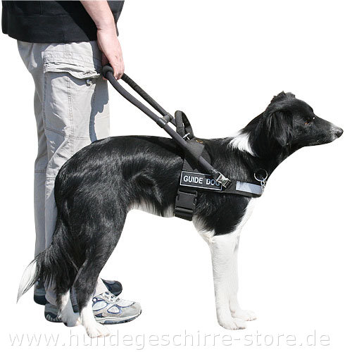 Blindenhundegeschirr Nylon