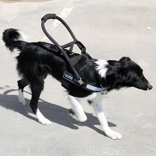 Nylon Blindenhundgeschirr kaufen