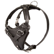 Dog Harness K9 Leather Padded | Pulling Harness for Working Dog