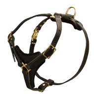 Leather Dog Harness for Mantrailing | Light Walking Dog Harness