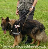 Assistance Guide Harness for German Shepherd and Other Breeds