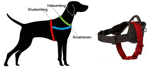 Hundegeschirr Nylon messen