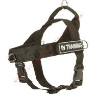 Nylon Dog Harness, K-9 Harness for Better Control of Your Dog