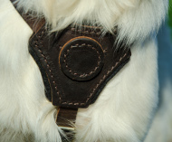 Buy golden retriever harness leather