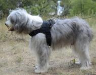 Hundegeschirr Nylon für Südrussichen Schäferhund K9