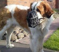 Hundemaulkorb für Große Hunde wie St. Bernhard, Gepolstert