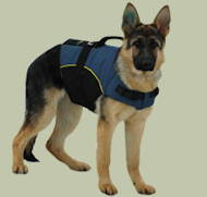 Nylon dog harness with extra handle for German Shepherd