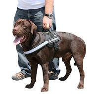 Allwetter-Sporthundegeschirr für Labrador, reflektierendes