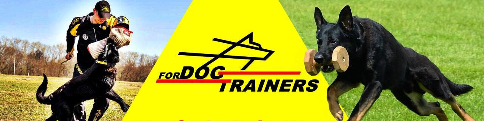 Nachrichten Hundegeschirre Store 10 besten Hundebedarfsartiklen