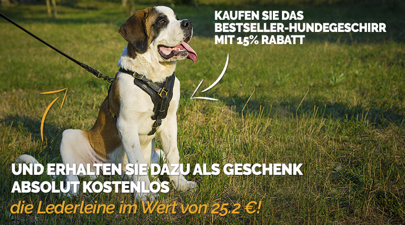 https://www.hundegeschirre-store.de/images/banners/Brustgeschirr-und-Leder-Hundeleine-Rabatt.jpg