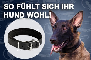Hundehalsband mit Polsterung