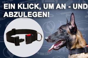 https://www.hundegeschirre-store.de/images/banners/C41-Nylon-Halsband-Allwetter.jpg