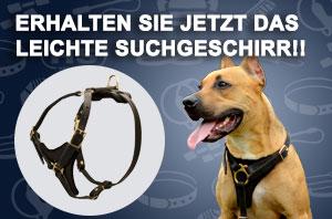 https://www.hundegeschirre-store.de/images/banners/H3-premium-Hundegeschirr.jpg