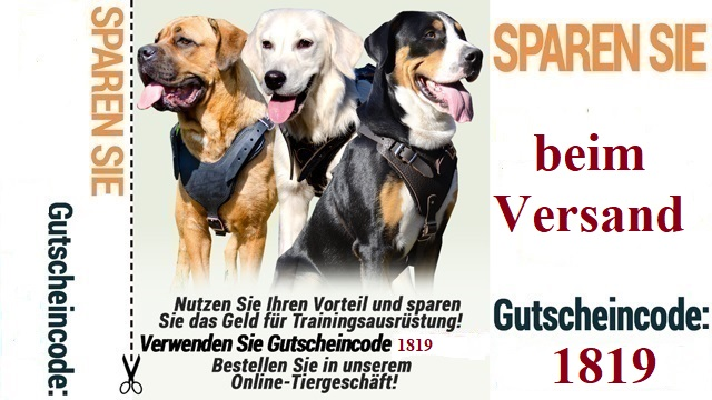 https://www.hundegeschirre-store.de/images/banners/Kostenloser-Versand-Januar.jpg