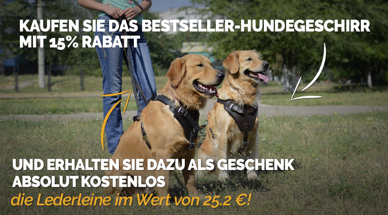 https://www.hundegeschirre-store.de/images/banners/Product+Gift_Banner-Header-with-dog-H1-L320-de.jpg