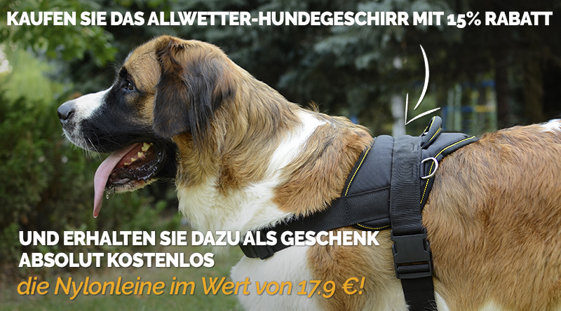 https://www.hundegeschirre-store.de/images/banners/Product+Gift_Banner-Header-with-dog-H6-L9-de.jpg