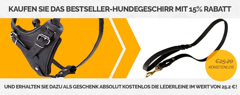 https://www.hundegeschirre-store.de/images/banners/Product+Gift_Banner-Main-Banner-DE-H1-L320.jpg