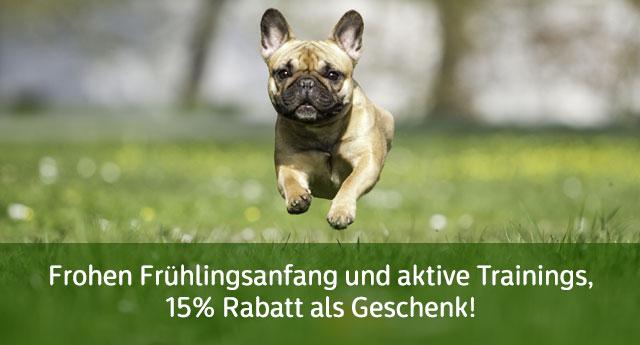 https://www.hundegeschirre-store.de/images/banners/Hunde-Spielzeuge-Sonderangebot-kaufen.jpg