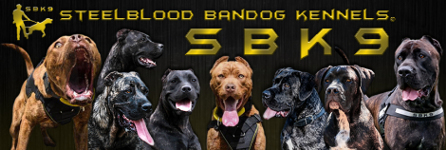 steel blood kennel SBK9