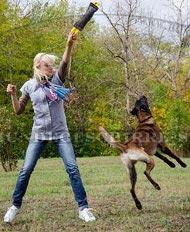 Beißkissen für Schäferhund, große Beisswurst