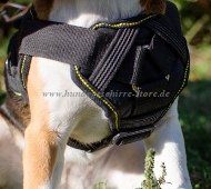 Chest Harness of Nylon for Beagle