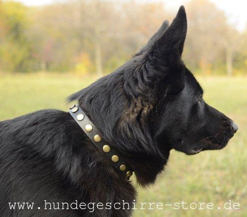 Schmales Lederhalsband 25 mm für Hunde