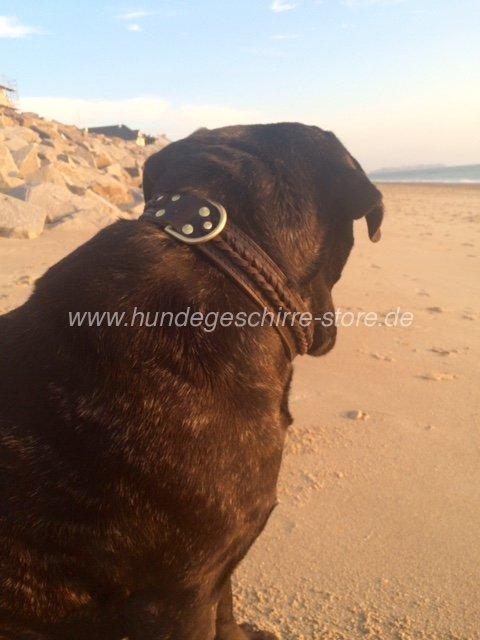 Mastiff halsband leder geflochten berlin