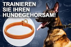 Designer Leder Hundehalsband