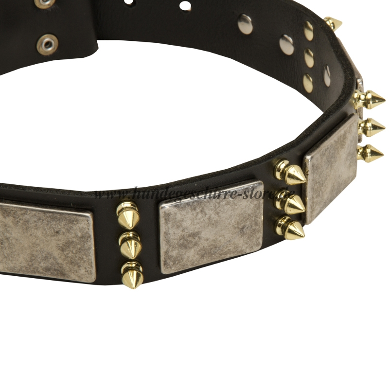 Luxury Dog Accessories | Leather Dog Collar for Laika TOP
