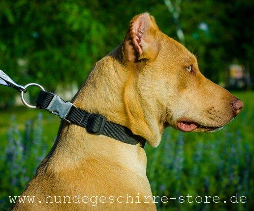 Metallsteckverschluss für Hundehalsband aus Nylon