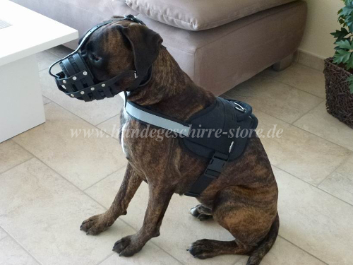 Boxer dog harness reflective