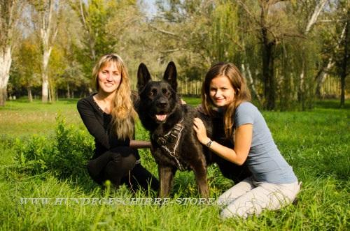 Hundegeschirr Leder für Schäferhund