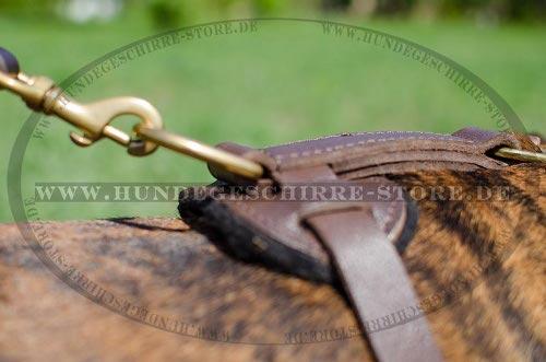 Hundeleine mit Karabinerhaken aus Messing für Alltag