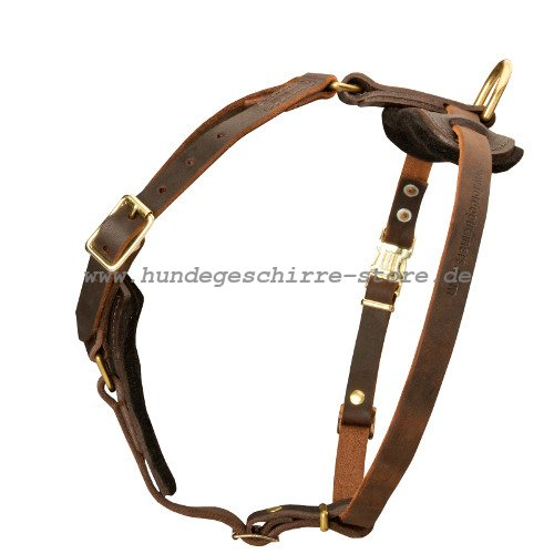 leather harness in brown adjustable