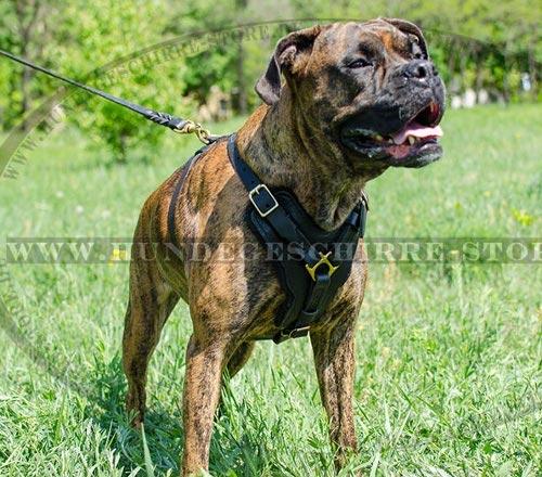 K9 Brustgeschirr für Diensthunde im Royal Design kaufen
