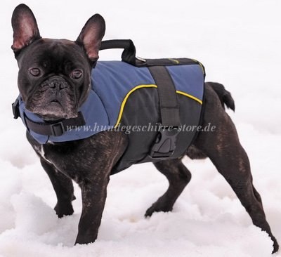 French Bulldog nylon dog harness with padding