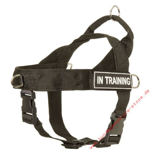 harness for dog training