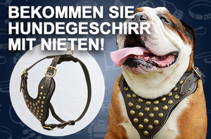 Hundegeschirr aus Leder, verstellbar