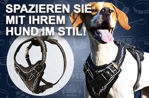 Hundegeschirr aus Leder, handbemalt