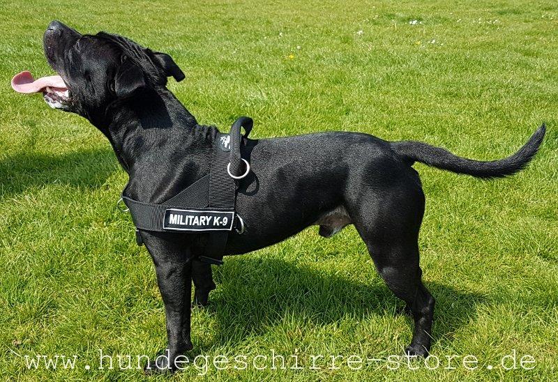 geschirr f252r hund aus nylon mit logos �419