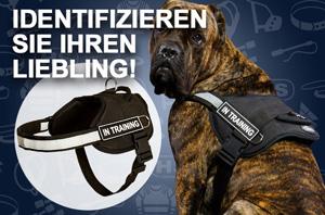 Designer Hundegeschirr aus Leder, handbemalt