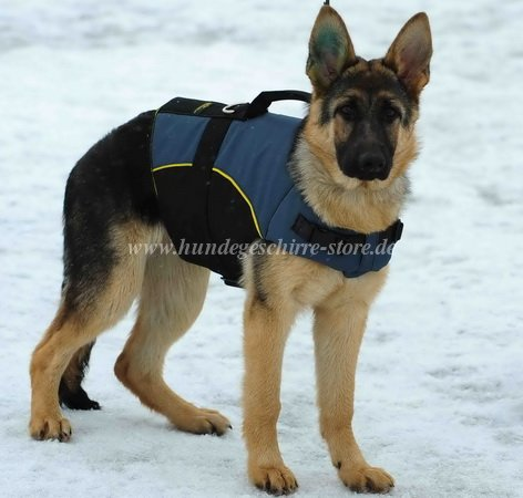 shepherd dog harness with warm padding